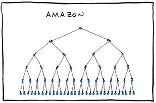 amazon org